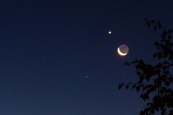 Самая яркая точка кроме луны —Венера. Чуть ниже видно одну из самых ярких звёзд —Регул