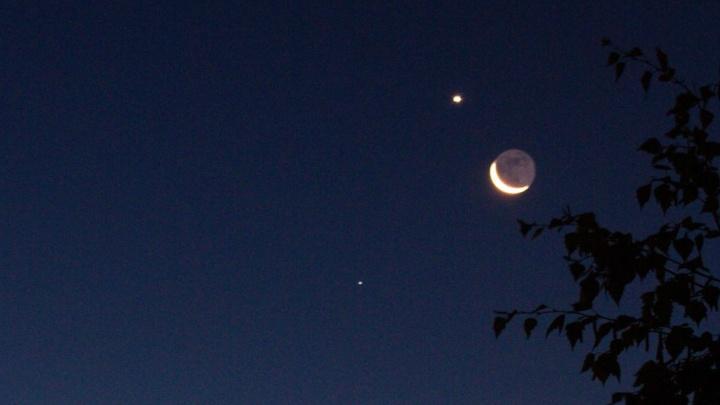 Утром в небе над Омском в одну линию выстроились планеты и звезды