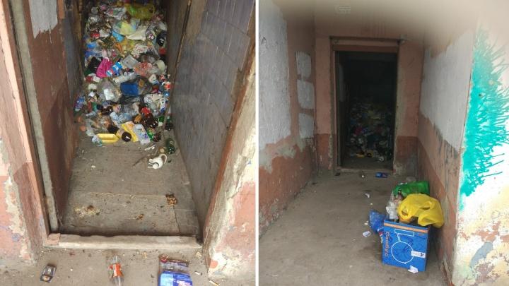 Мэрия обманула ярославцев: у жителей многоэтажки две недели не вывозят мусор. По дому бегают крысы