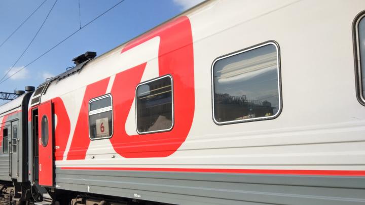 Прямой поезд «Сапсан» до Петербурга решили вернуть нижегородцам