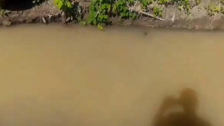 Ярко-оранжевая вода в речке Орловке стала грязно-белой и с гранулами пластика