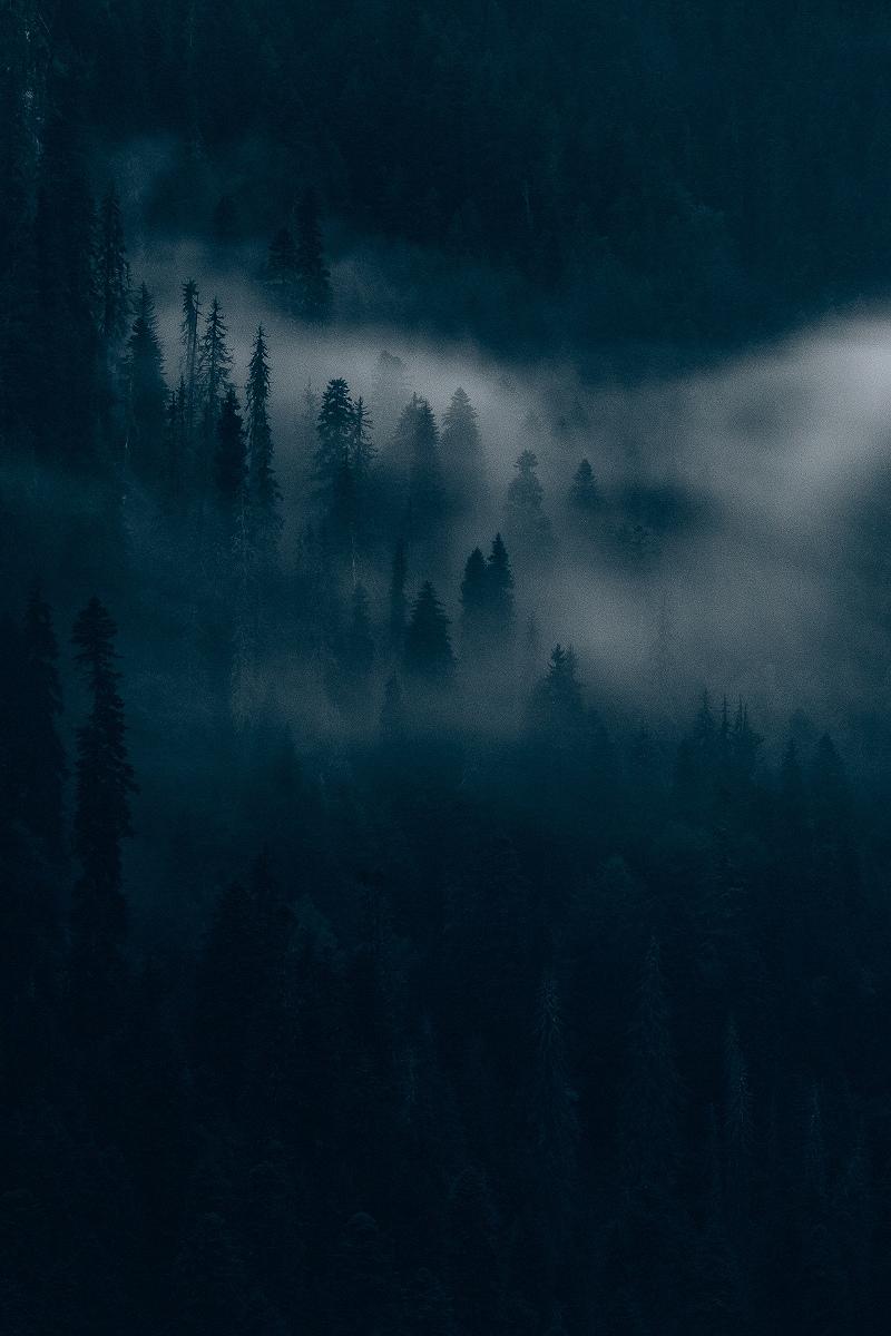 Почти всё время фотограф проводил на природе