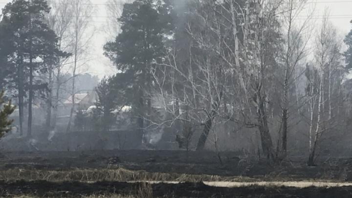 В Курганской области пожарные за сутки отвели угрозу огня от четырех населенных пунктов