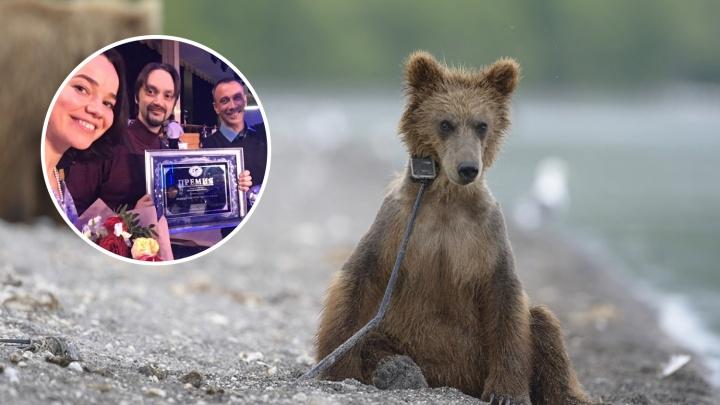 «Я был в этих местах»: фильм пермячки «Медведи Камчатки» оценил Владимир Путин