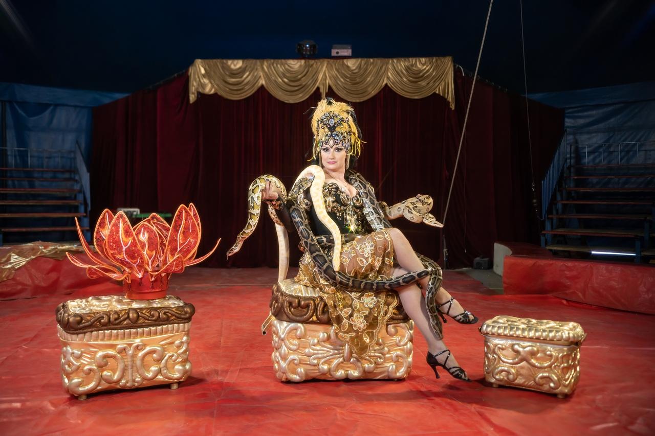Посетителей цирка ждут восточные танцы со змеями