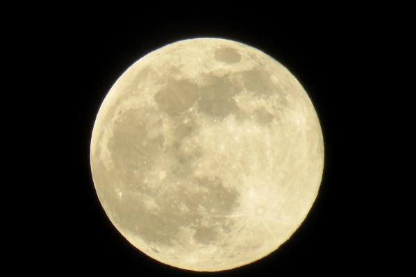 Когда Луна подходит к Земле так близко, можно хорошо разглядеть ее поверхность