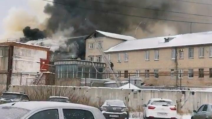 В Тюмени горела лечебная колония на Бабарынке. Что известно о ЧП?