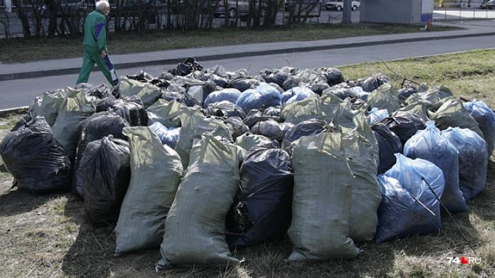 «Около моего дома стоит 20 мешков»: Владимир Елистратов пожаловался на проблемы с вывозом мусора