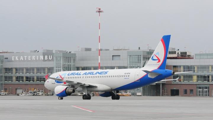 Пассажиры трех международных рейсов «Уральских авиалиний» не могут вылететь из Кольцово