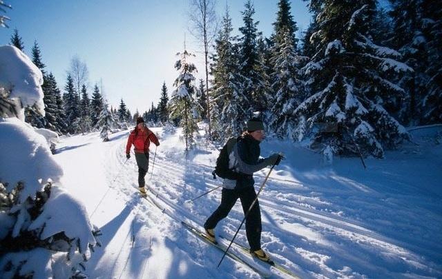 """Лыжи стали ещё доступнее: в """"СпортЭк"""" стартовала акция на лыжный инвентарь"""
