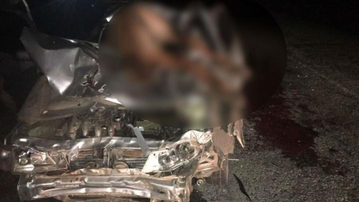 В Башкирии легковушка сбила табун лошадей: водитель чудом выжил