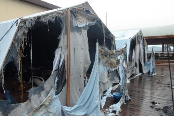 В детском лагере Хабаровского края сгорели 20 из 26 палаток