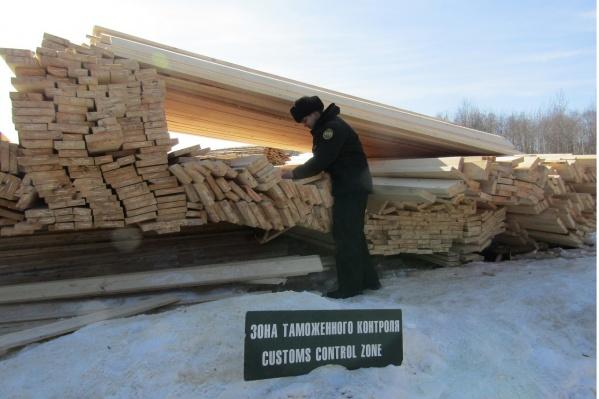 Уральскую древесину незаконно вывозили за рубеж