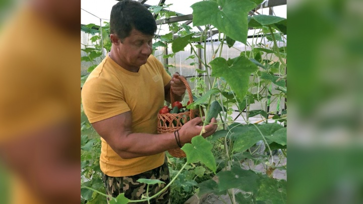 Мэр выходного дня: Владимир Слепцов раскрыл секрет дачного урожая
