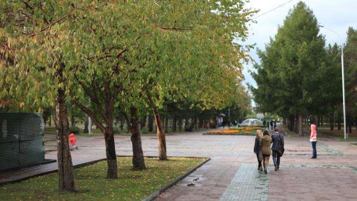 Новосибирца приговорили к 9 годам строгого режима за убийство в Нарымском сквере
