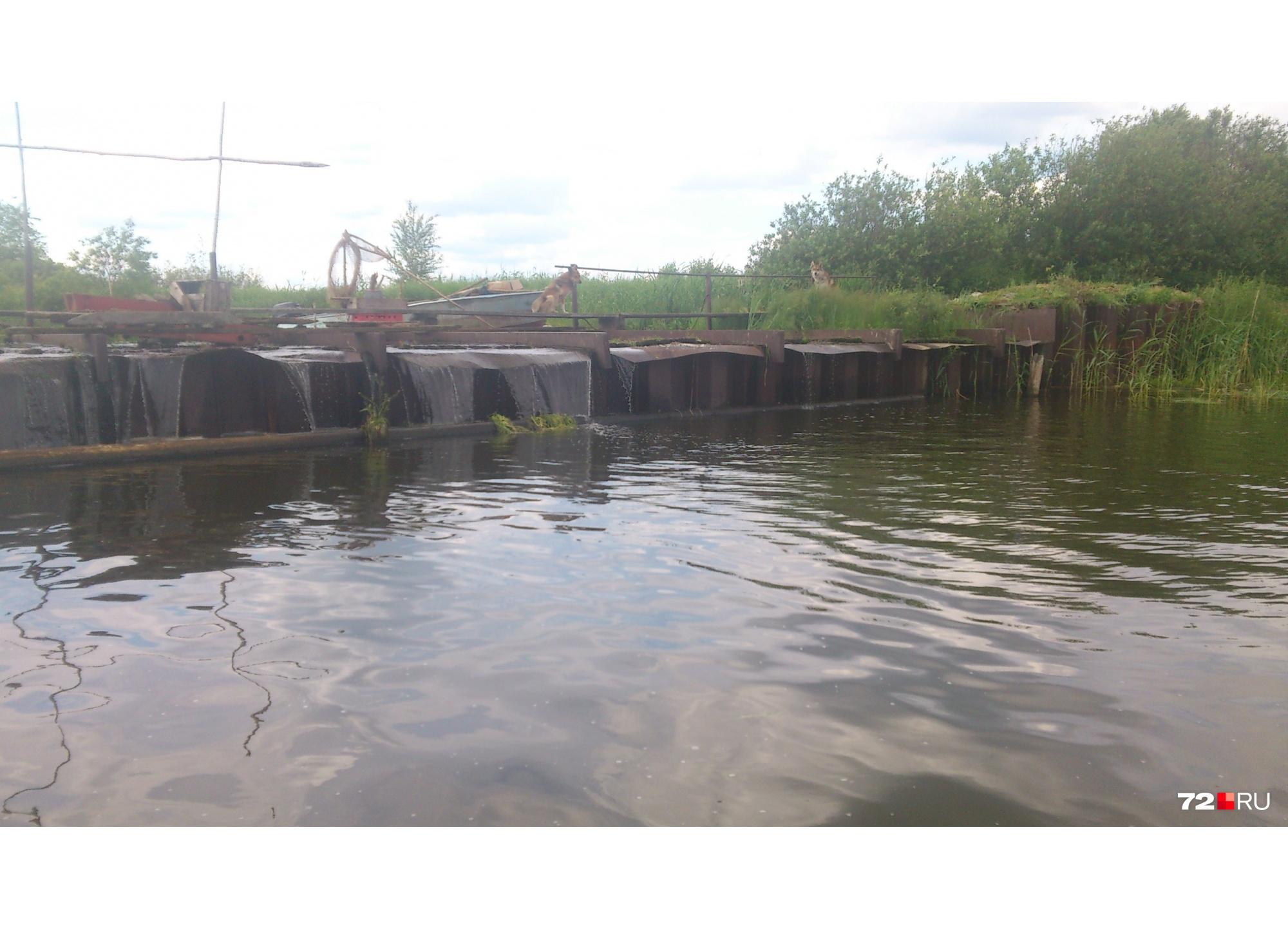 Озеро в деревне является водохранилищем, там стоит дамба