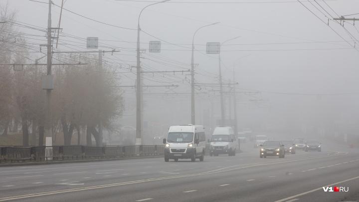 Туманы и гололедица на трассах не отступят от Волгоградской области до конца недели: смотрим прогноз
