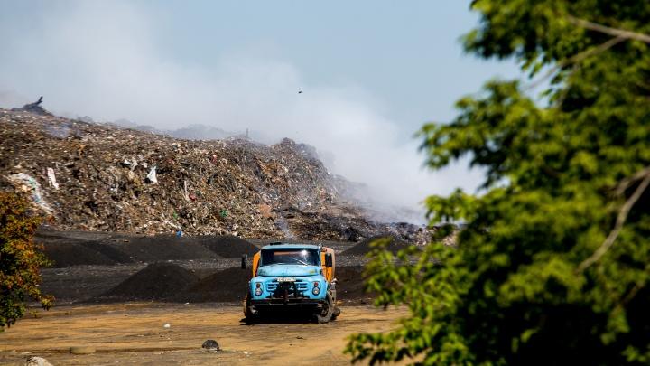 В Новосибирске снизились тарифына вывоз мусора