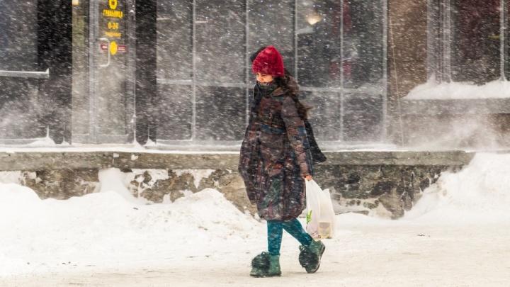 Синоптики рассказали, когда температура в Новосибирской области опустится до –33 градусов