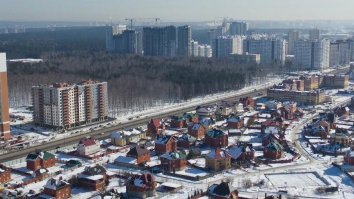 «Атомстройкомплекс» выкупит берёзовую рощу в Краснолесье, которую уже начал вырубать