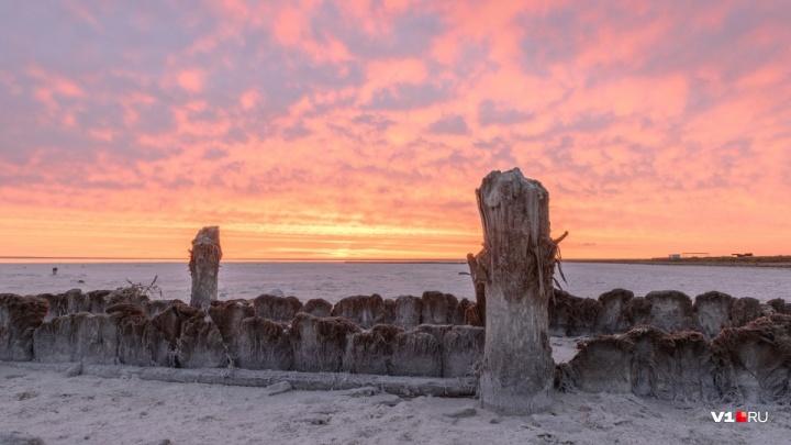 В «город мертвых» и на Байкал: озеро Эльтон попало в десятку самых желанных уголков для туристов