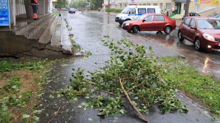 Эхо шторма: какие части Архангельска подключат к электроснабжению сегодня