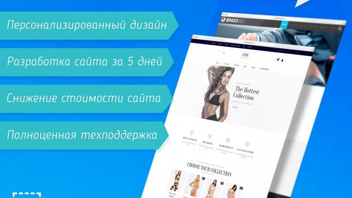 IT-компания из Новосибирска вышла на международный уровень