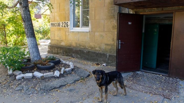 «Давно должны расселить»: рушащийся дом на юге Волгограда шесть лет числится в черном списке