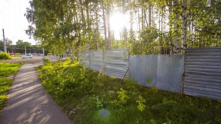 Жители Рыбинска устроили бунт против строительства часовни в роще: мэр не реагирует