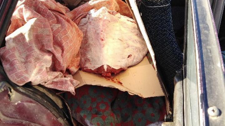 В Самарской области задержали крупную партию говядины без документов