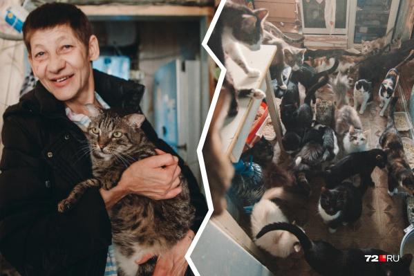 У тюменки в комнате живут 72 кошки. И это не все питомцы, за которыми следит Марина Рейдаленко