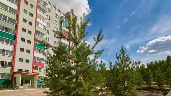 Зелёный даже зимой: микрорайон «Вишнёвая горка» встретил новосёлов тишиной и свежим воздухом