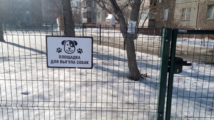 «Проявите инициативу»: челябинцам объяснили, как организовать во дворе площадку для выгула собак