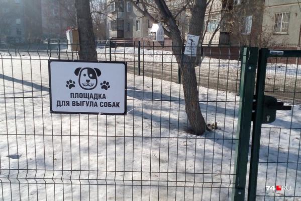 Решение о площадке для выгула собак жители должны принять сообща