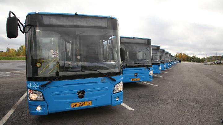 Подаренные Москвой автобусы поедут по Архангельску 30 декабря