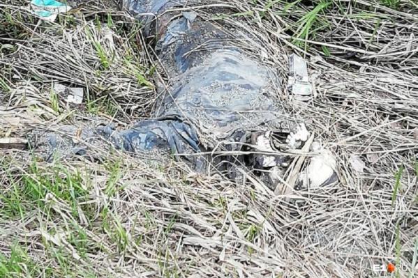 Тело человека нашли участники велопрогулки 25 мая