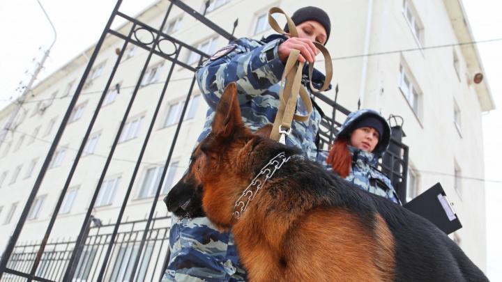 В ФСБ Башкирии рассказали, что сегодня искали силовики в школах республики