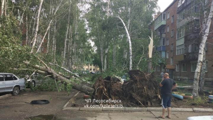 На Лесосибирск обрушился ураган