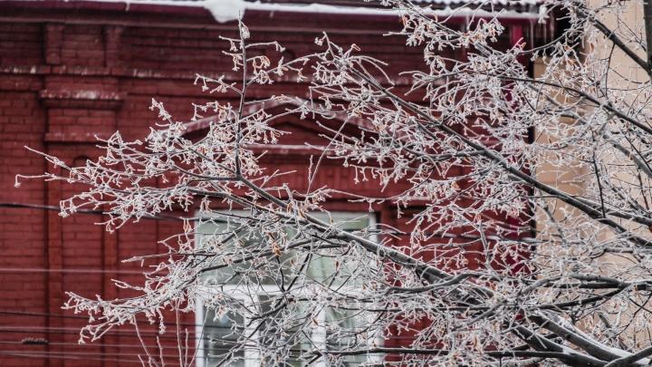 МЧС предупреждает: в новогодние праздники сохранится сильная изморозь на проводах