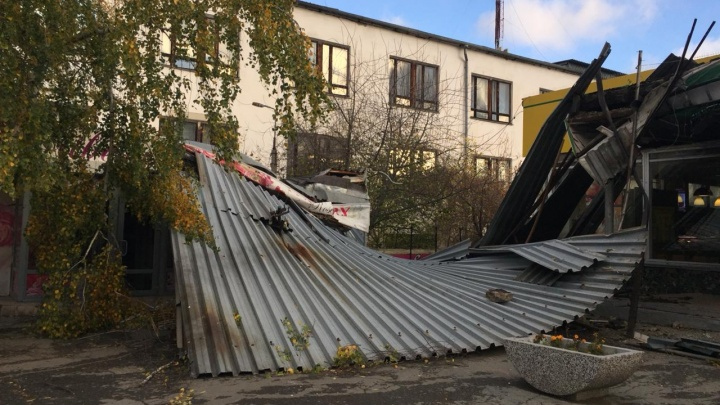 Буря продолжается: синоптики и спасатели предупредили екатеринбуржцев о шквалистом ветре