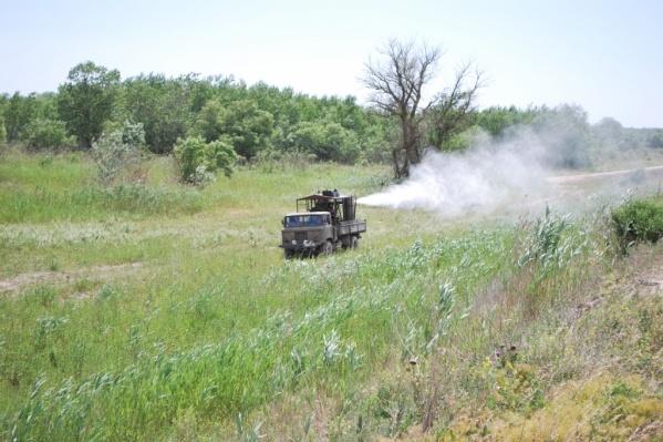 В регионе проводят обработку полей от саранчи