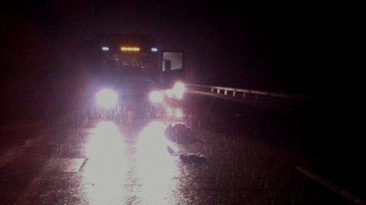 На трассе в Башкирии грузовик Scania насмерть сбил пенсионерку