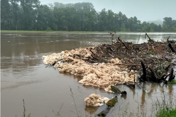 Странная пена насторожила отдыхающих возле реки