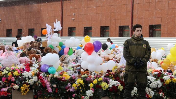 В мэрии объяснили фото с игрушками и надписями «Кемерово, помним» в мусорках
