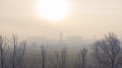 Наркоманы, мясокомбинат и болота: прогулка по достопримечательностям пасмурного Солнечного