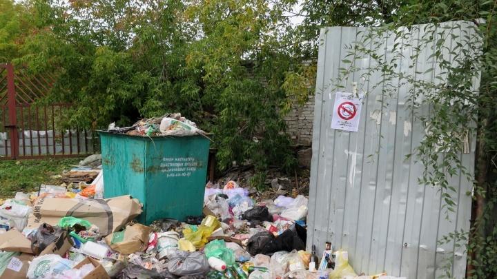 Горы мусора: в Кургане управляющие компании не справляются со своей работой