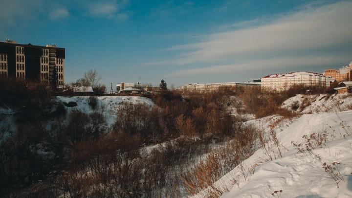 Добровольно-принудительно: в ТюмГУ собирают подписи за строительство общежития в логе реки Тюменки
