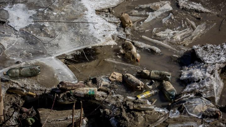Академики предложили создать парк по переработке мусора под Новосибирском