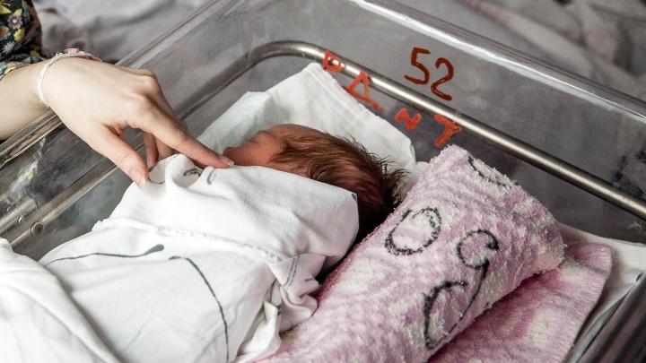 Сто молодых мам из Красноярска обратились за консультацией по новой выплате от президента