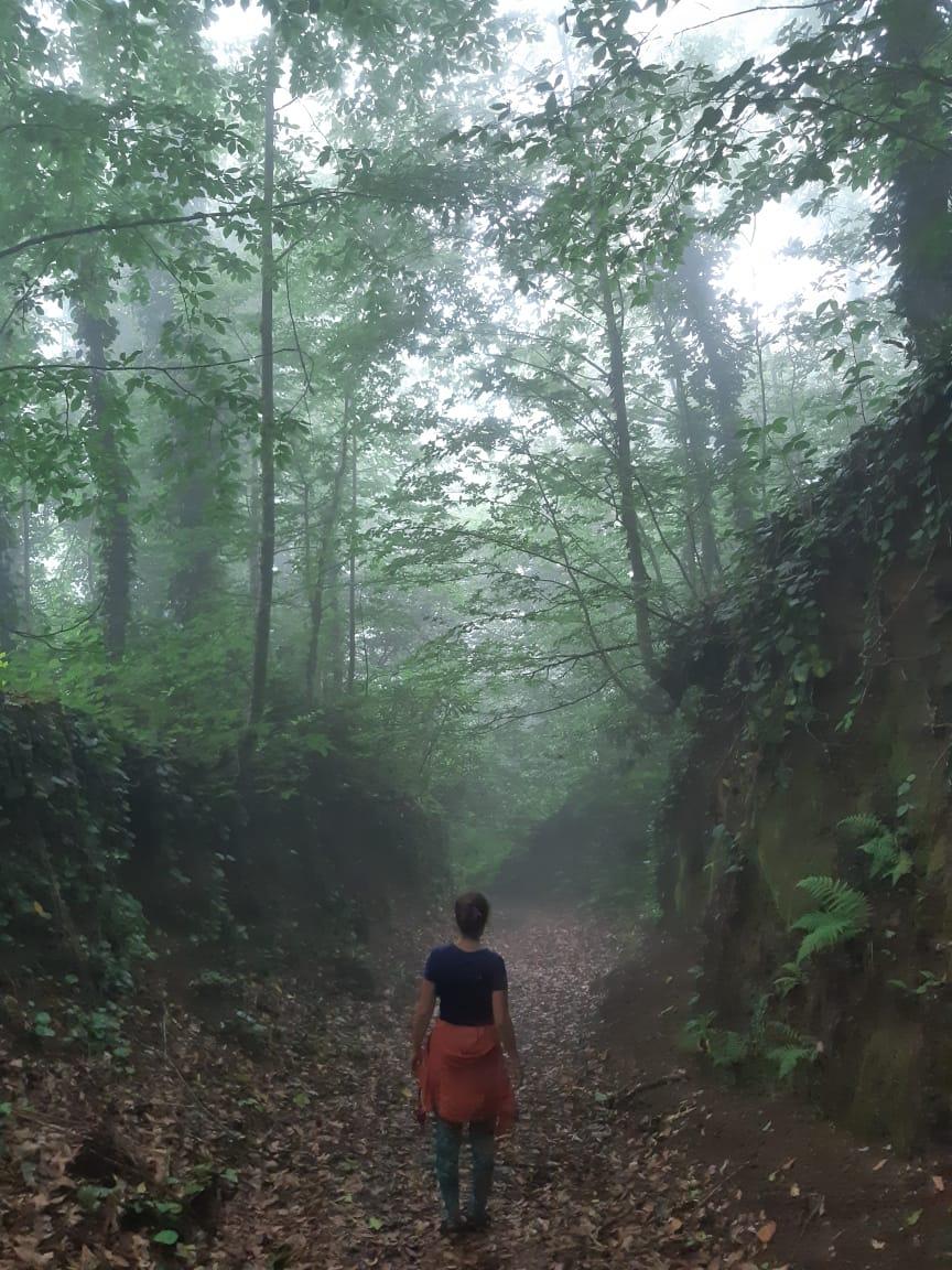 Трекинг в горах Грузии